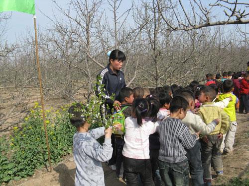 山西运城丁樊幼儿园户外主题活动:找春天
